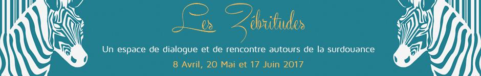banniere-stage-zebritude2-2017.jpg