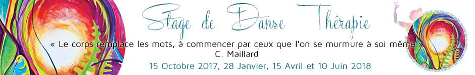 banniere-stage-dansetherapie-20172018.jpg