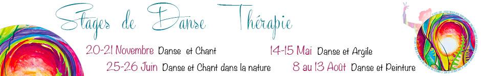banniere-stage-dansetherapie-2021-2022.jpg