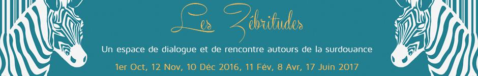 banniere-stage-zebritude-2016-2017.jpg